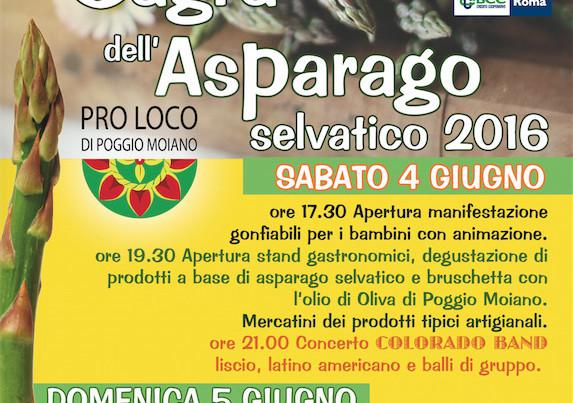 11SagraAsparago2016